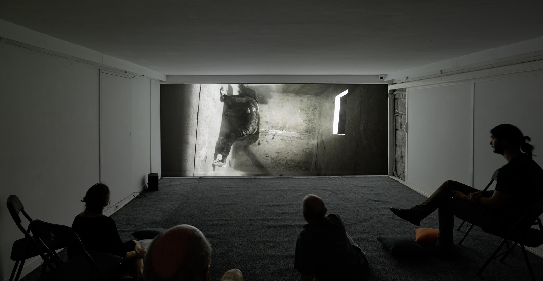 @Florian Pugnaire et David Raffini, Agon, 2016 - galerie Eva Vautier