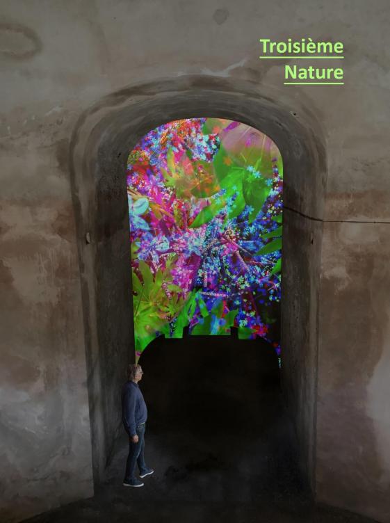 @Miguel Chevalier, Troisième Nature