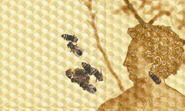 BeeXel-d'après-Dürer-extrait-2018-Lavis-au-jus-de-citron-sur-chiffon-lin-cire-gaufrée-abeilles-vivantes-divers-matériaux